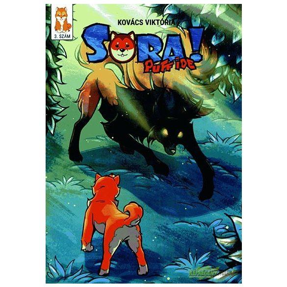 Sora - Puff ide 3 .fejezet