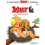 Asterix 27 - Asterix fia